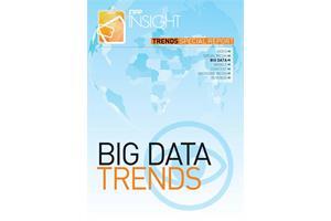 FIPP Insight Special Report Big Data (Ian Crawford)