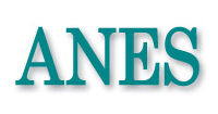 Associazione Nazionale Editoria di Settore (ANES)